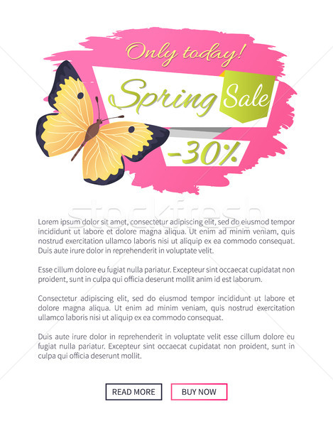 Big Sale Spring Discount Offer Label Butterfly Stock photo © robuart