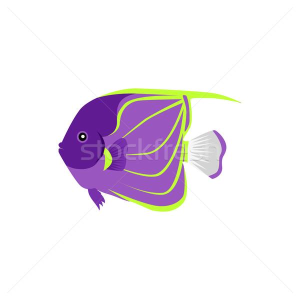 Peixe projeto pintado vida oceano mar Foto stock © robuart