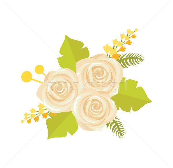Stok fotoğraf: Buket · beyaz · güller · ikon · bej · yalıtılmış