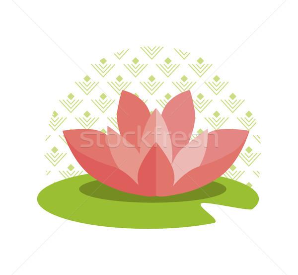 Pink Lotus on Green Leaf and Circle with Pattern Stock photo © robuart