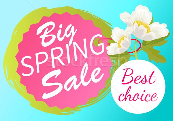 En İyi seçim büyük bahar satış etiket etiket Stok fotoğraf © robuart