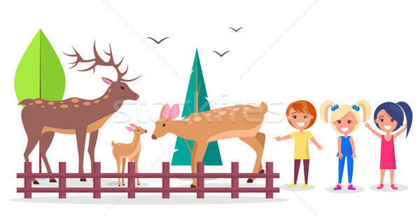 Deer Family in Woods Isolated Cartoon Illustration Stock photo © robuart