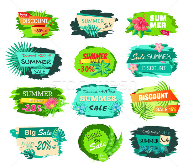 Set Promo Labels Tropical Flowers and Green Leaves Stock photo © robuart