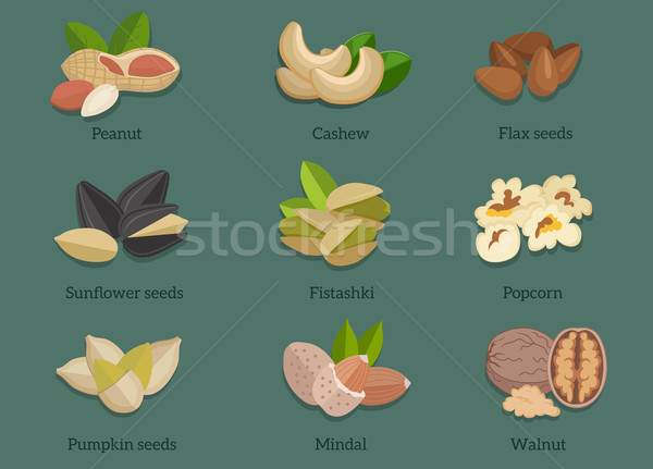 Set Natural Walnut Grain Flat Design Stock photo © robuart