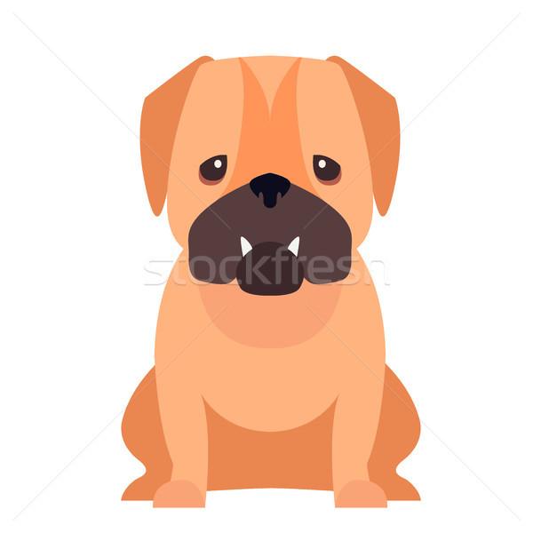 Cute собака Cartoon вектора икона смешные Сток-фото © robuart