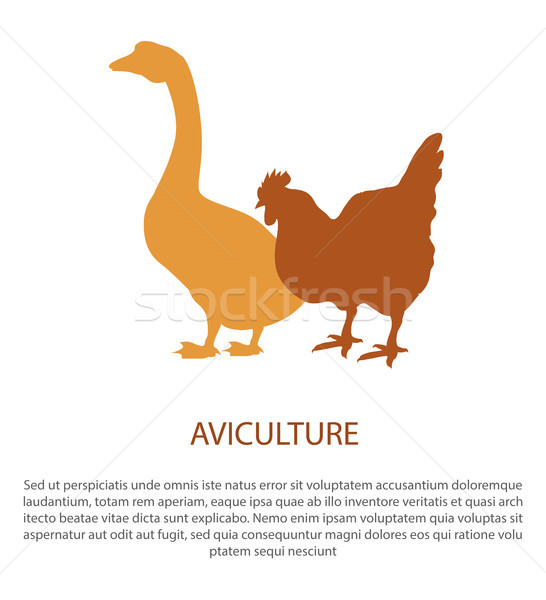 Agriculture Poster with Silhouette of Hen Goose Stock photo © robuart
