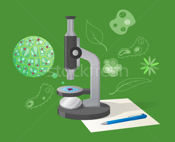 Biológico desenho animado estilo ilustração isolado Foto stock © robuart