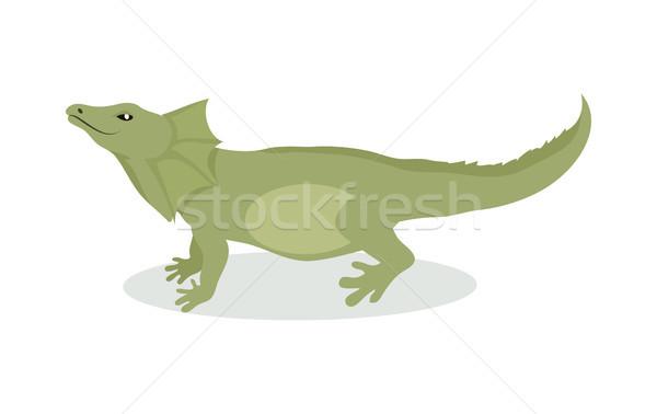 Kertenkele karikatür ikon dizayn yeşil Stok fotoğraf © robuart