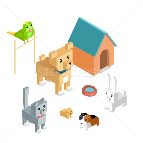 Zwierzęta zestaw ikona izometryczny 3D projektu Zdjęcia stock © robuart