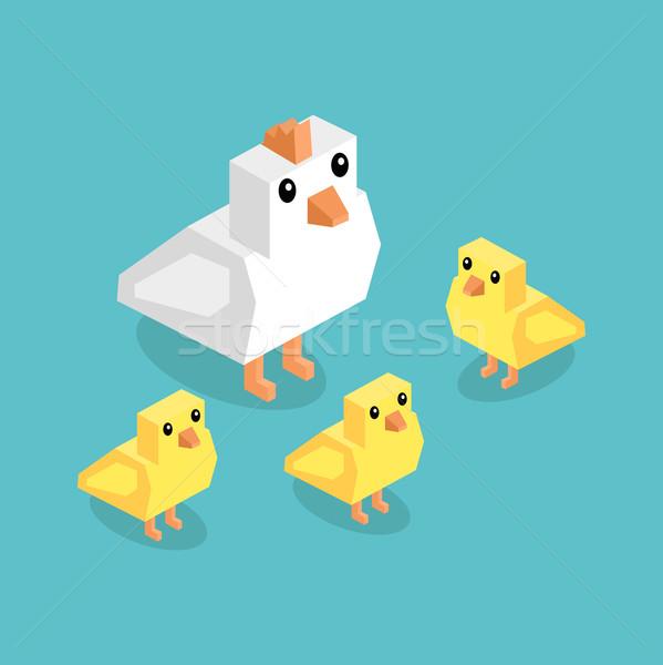 Isometrische witte kip Geel chick geïsoleerd Stockfoto © robuart