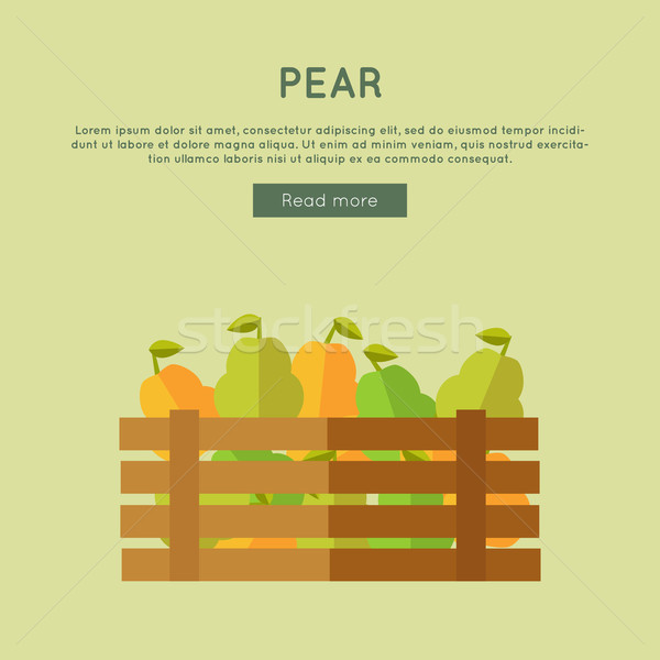 Pear Vector Web Banner in Flat Style Design.  Stock photo © robuart