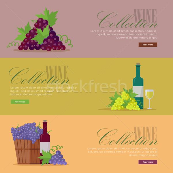 Conjunto elite vinho pôsteres Foto stock © robuart