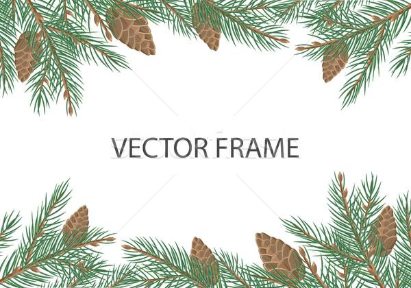 Vektor keret fenyőfa copy space stílus örökzöld Stock fotó © robuart