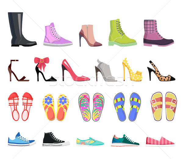 Collection of Shoes Types. Modern Female Footwear Stock photo © robuart