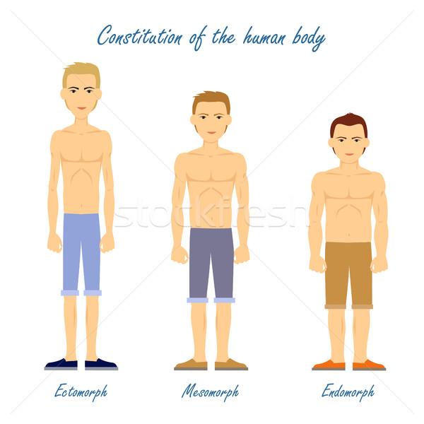 Emberi test alaptörvény férfiak alsónemű ruha Stock fotó © robuart