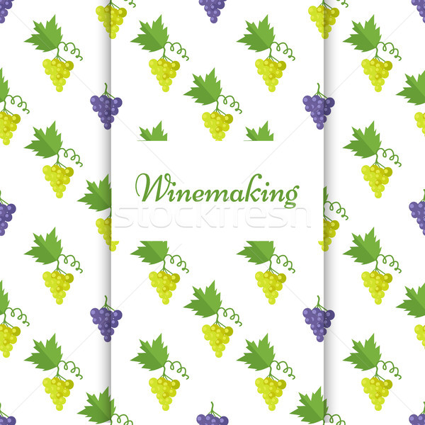 Winemaking Poster with Isolated Grapes Vector Stock photo © robuart