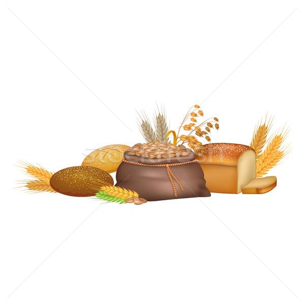 穀類 農業の 製品 カラフル ポスター ベクトル ストックフォト © robuart