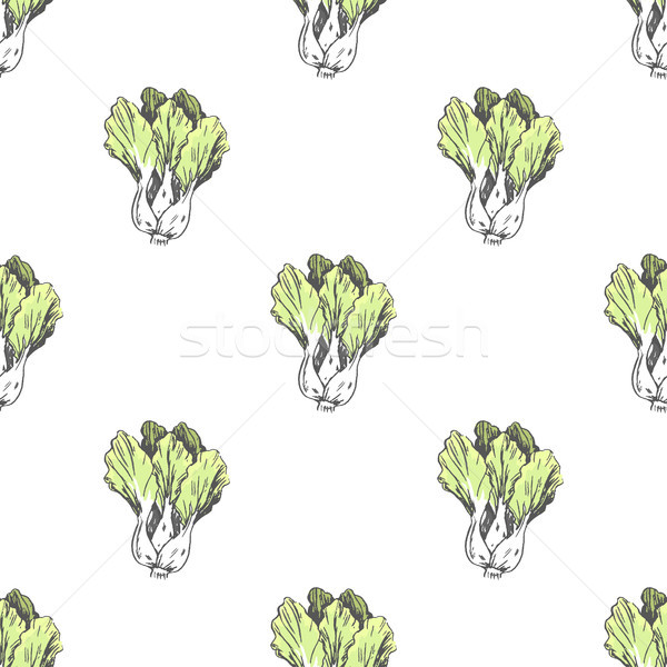 Chinese Cabbage Illustration in Endless Texture Stock photo © robuart