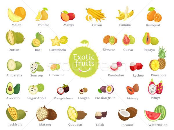 Delicious Exotic Fruits Full of Vitamins Big Set Stock photo © robuart