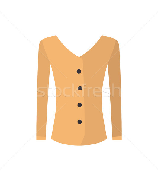 Modern Female Shirt Pattern, Color Vector Banner Stock photo © robuart