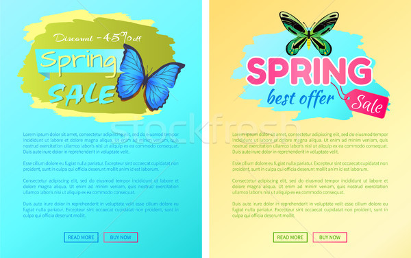 Big Sale Spring Discount Offer Labels Butterflies Stock photo © robuart
