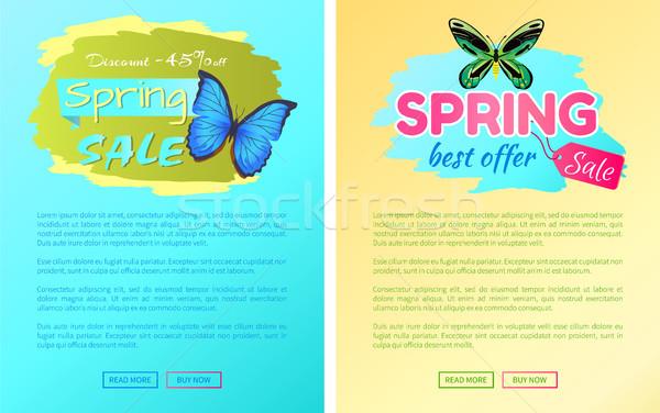 Grand vente printemps réduction proposer étiquettes Photo stock © robuart