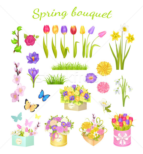 Stock photo: Concept of Beautiful Spring Bouquet Color Flowers