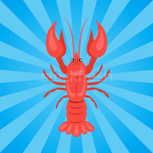 Crawfish or Crawdads, Freshwater Lobster Yabbies Stock photo © robuart