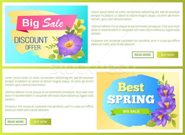 Groß Frühling Verkauf Anzeige Label Blumen Stock foto © robuart