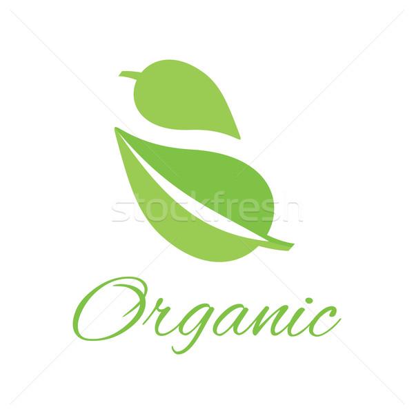 Organic Logo Green Leaf Design Flat Stock photo © robuart