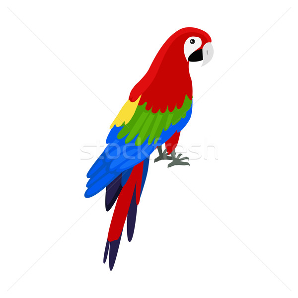Ara Parrot Flat Design Vector Illustration Stock photo © robuart