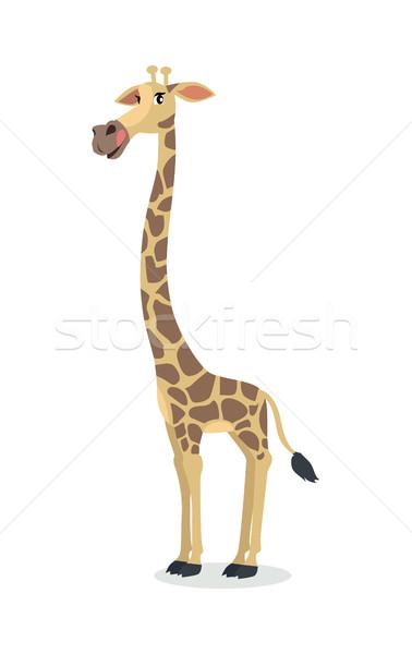 Engraçado girafa desenho animado ícone projeto Foto stock © robuart