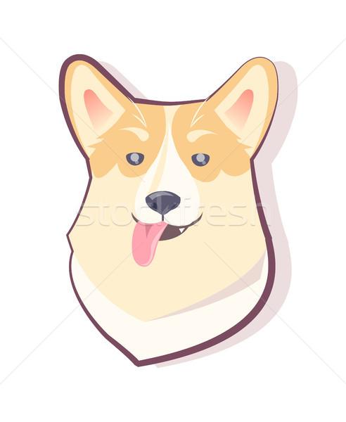 собака смайлик хитрый щенков икона Сток-фото © robuart