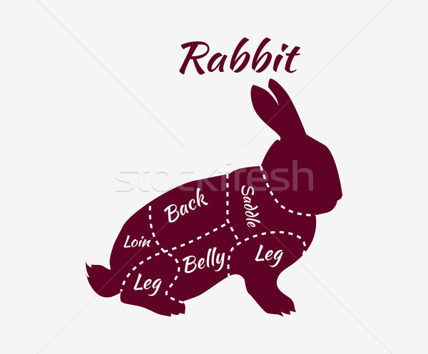 Typographic Rabbit Butcher Cuts Diagram Stock photo © robuart