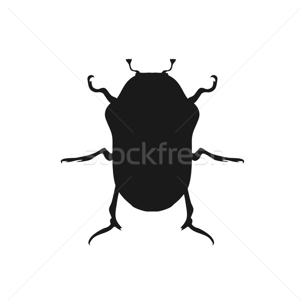 Bug insecte design faible noir jambes Photo stock © robuart