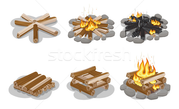 Gathered Firewood Collection for Making Bonfire Stock photo © robuart