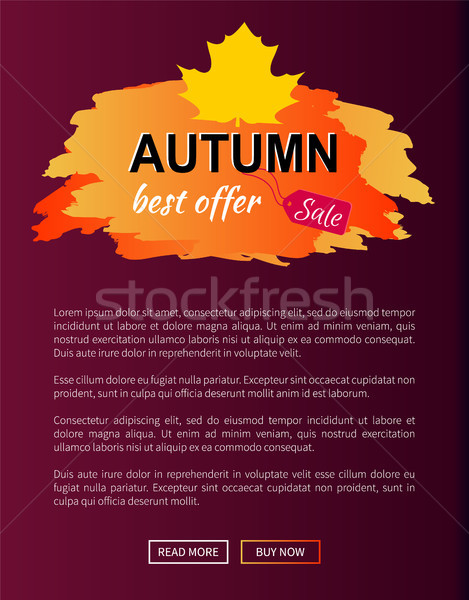 Best Offer Autumn Sale -35 Advert Promo Poster Stock photo © robuart