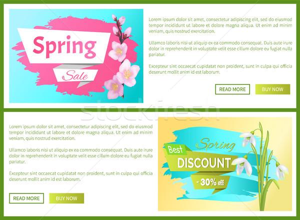 Spring Sale Advertisement Labels Branch of Sakura Stock photo © robuart