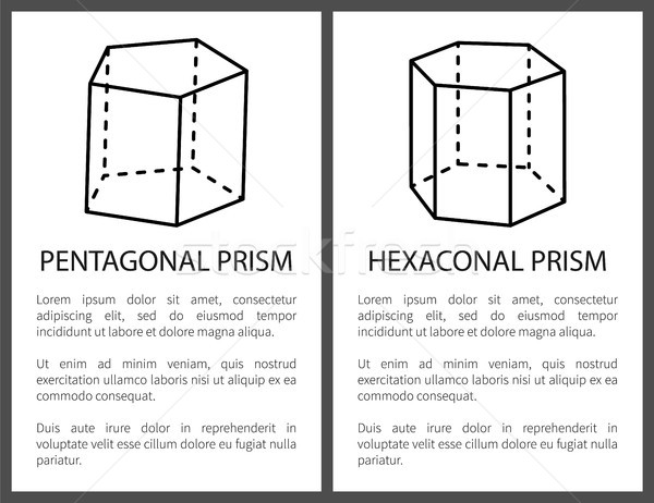 Pentagonal and Hexagonal Prisms, Vector Drawings Stock photo © robuart