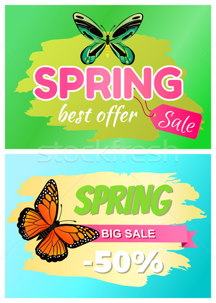 Spring Best Offer Sale Sticker of Green Dragonfly Stock photo © robuart