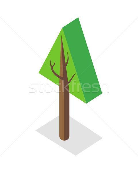 árvore ilustração isométrica projeção planta quadro Foto stock © robuart