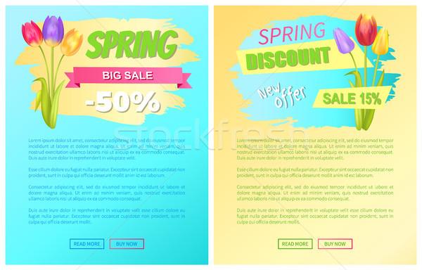 Primavera grande venda desconto novo oferecer Foto stock © robuart