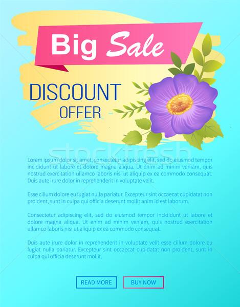 Discount Offer Big Sale Advertisement Label Viola Stock photo © robuart