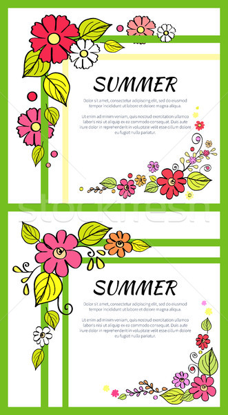 Summer Pictures Consists of Headline Text samples Stock photo © robuart