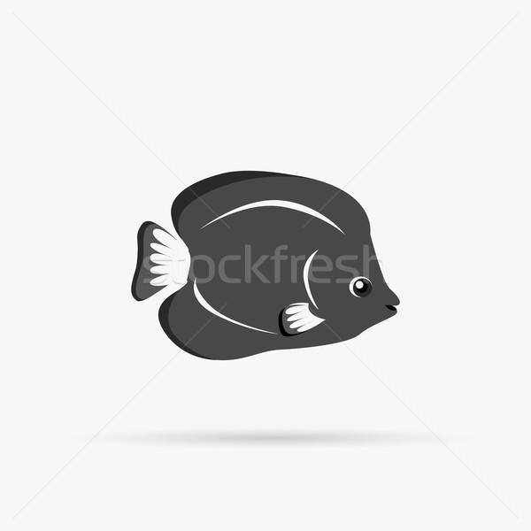 Chaetodon Larvatus Ocean Fish Icon Stock photo © robuart