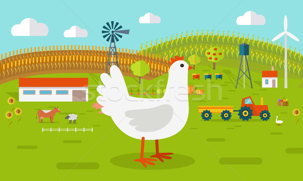 Hen on Farmyard Concept Illustration.   Stock photo © robuart