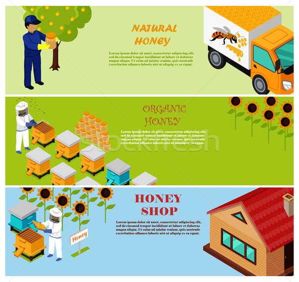 Natural, Organic and Shop Honey Vector Poster Stock photo © robuart