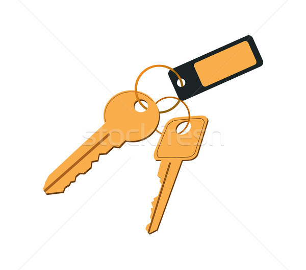 Keys in Keyring with Label Vector Illustration Stock photo © robuart
