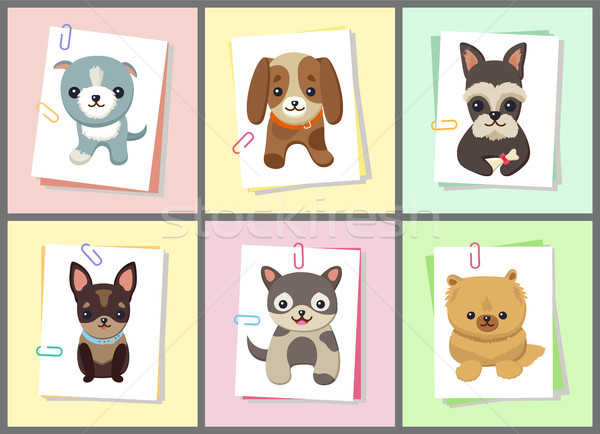 Stock photo: Puppies and Dogs Poster Set Vector Illustration
