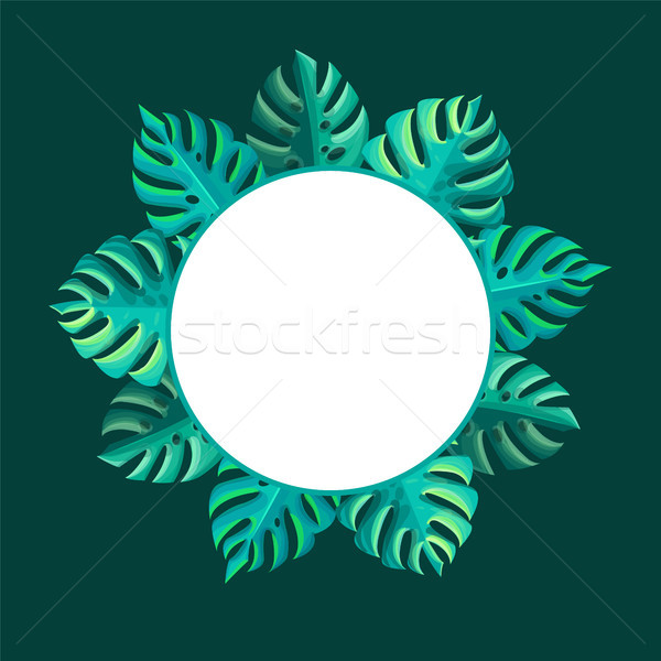 Round Frame with Tropical Monstera Leaves, Circle Stock photo © robuart